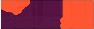 logo-bibleiq
